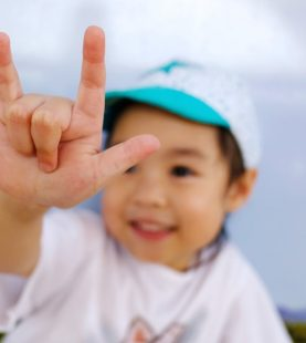 Baby Sign Language Course